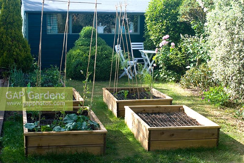 Garden with veg beds