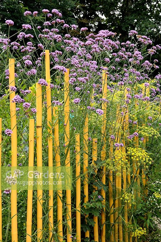Yellow painted bamboo canes used as path edging - Festival International des Jardins de Chaumont sur Loire 2010