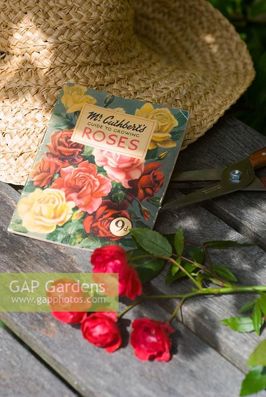Antique Mr Cuthbert's Growing Roses guide with rose and sunhat