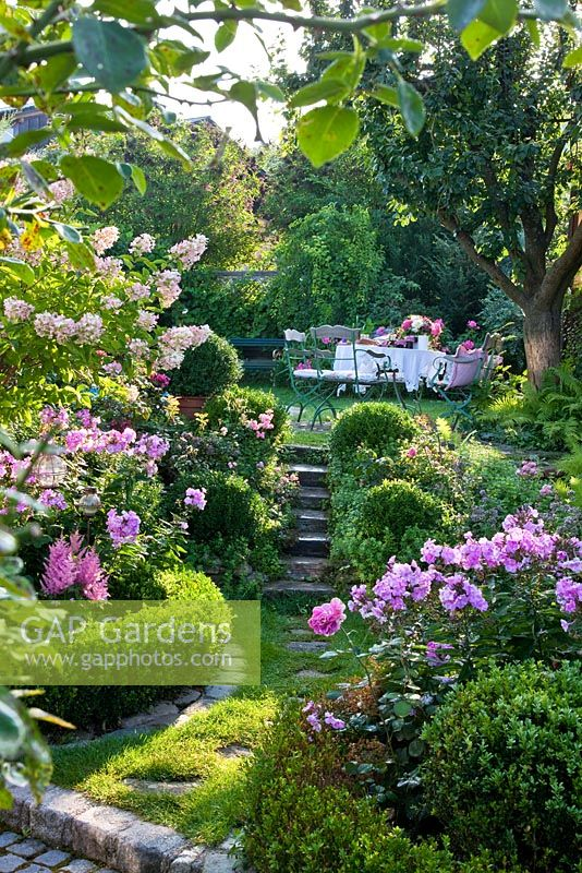 A pathway and steps that lead through box edged borders to a sitting area on an upper level of the garden are framed with Astilben, Hydrangea paniculata and Phlox paniculata
