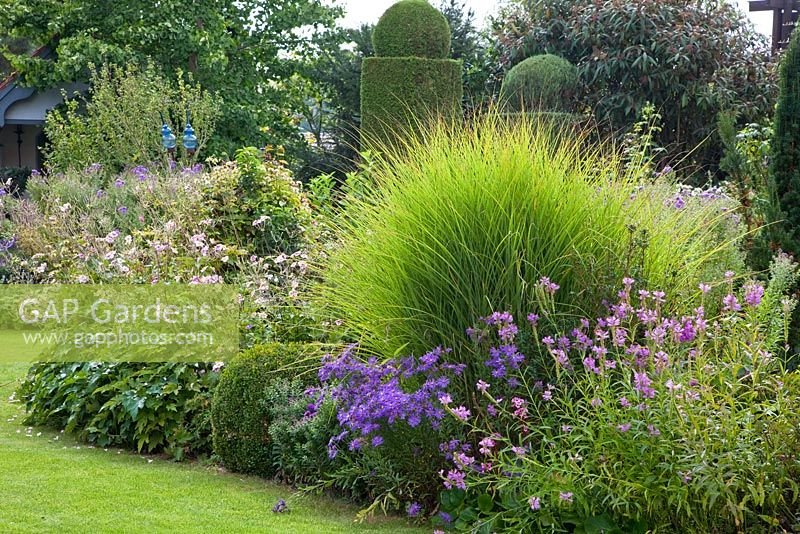 Gap gardens perennial flower bed with ornamental grass for Ornamental grass bed design