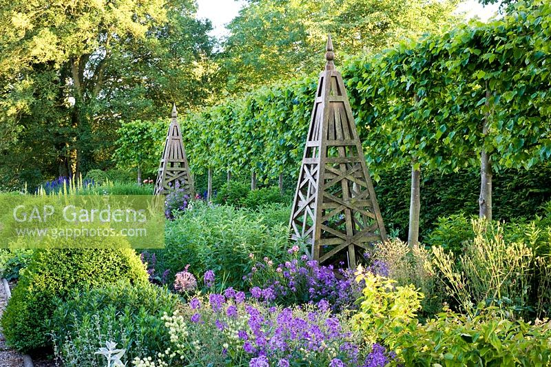 Summer border with wooden obelisk, backed by pleached Tilia - Lime hedge. Plants include Allium christophii, Penstemon, Achemilla mollis, Hesperis