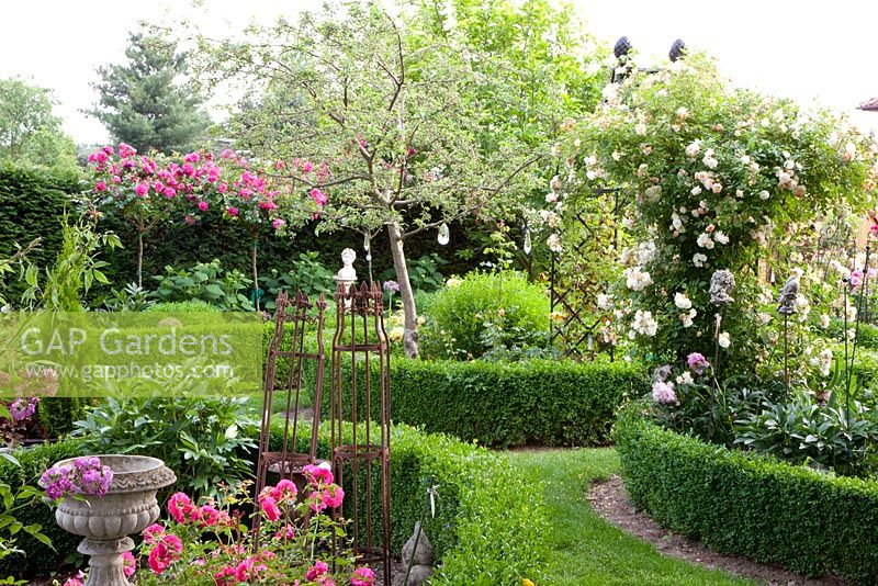 Gap Gardens Rose Garden With Climbing And Standard Roses In Beds Edged With Low Buxus Hedges