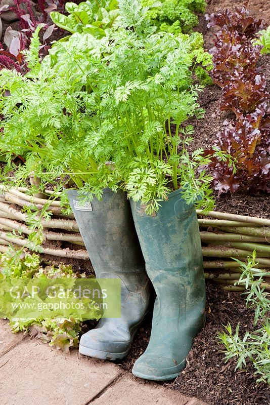 Carrots growing in wellies - 'When the Waters Rise' - Gold Medal winner, RHS Tatton Park Flower Show, Cheshire 2011,