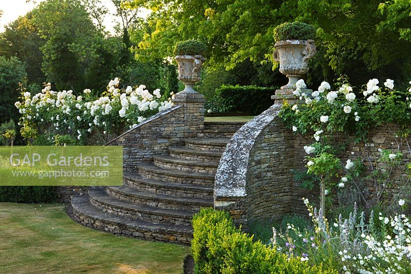 Curved stone steps with ornate urns and climbing Rosa