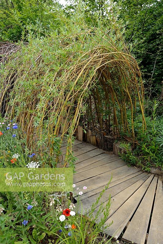 Gap Gardens Living Willow Tunnel With Wooden Pathway