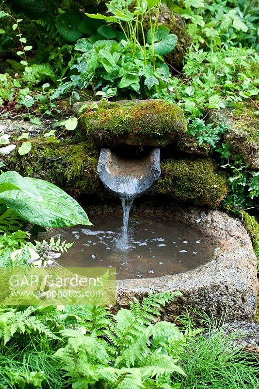 Water feature in woodland garden
