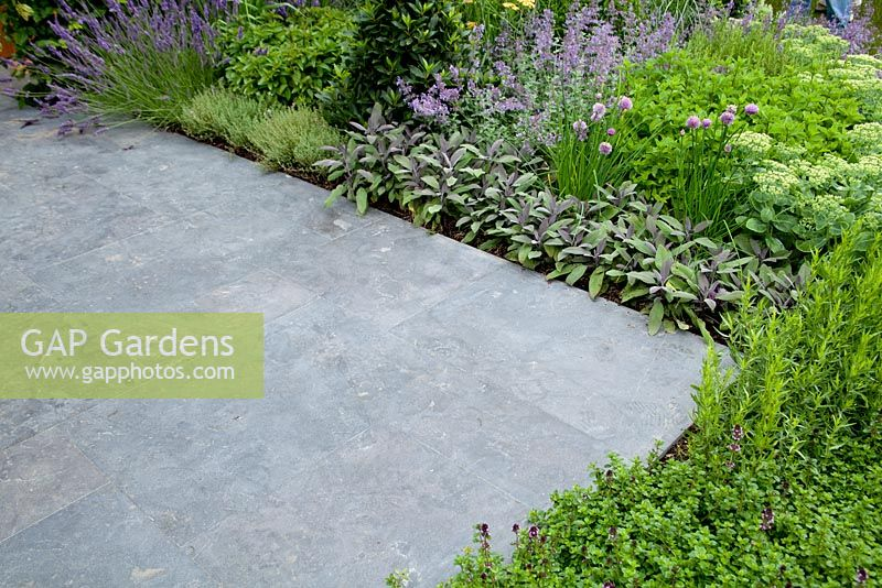 Gap Gardens Herb Border Sage Chives Rosemary Lavender And