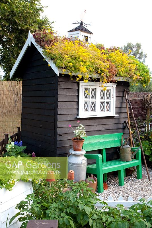 Garden shed with living roof - The Home front garden - Hampton Court 2011