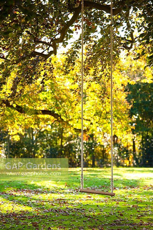 Gap gardens swing in tree hole park garden kent for Garden trees kent