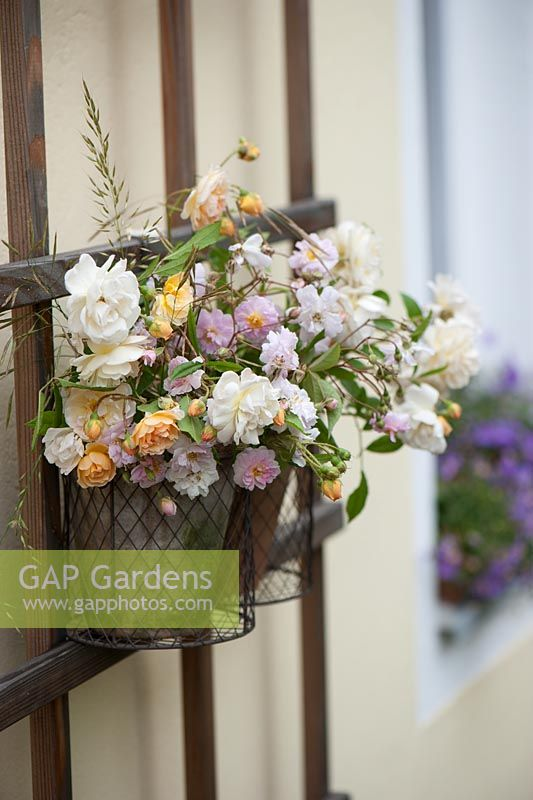 Gap gardens flower arrangements in wall mounted wire for Picture arrangements for large walls