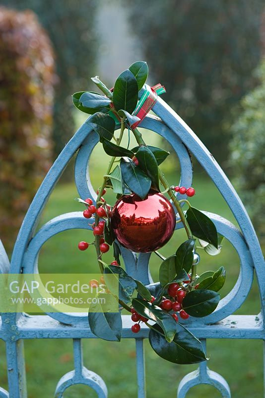 Blue metal gate decorated with bauble and Ilex 'J C Van Tol' - Holly sprig