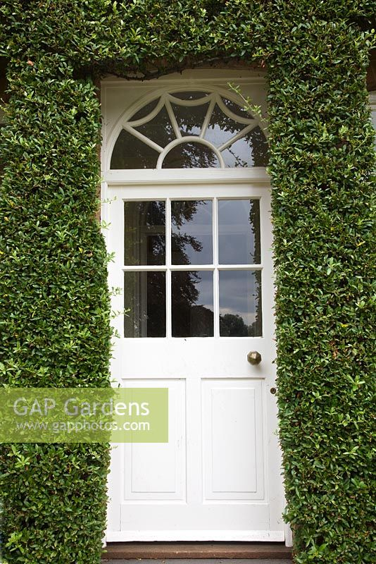 Trained Pyracantha neatly edges front door - Pine House