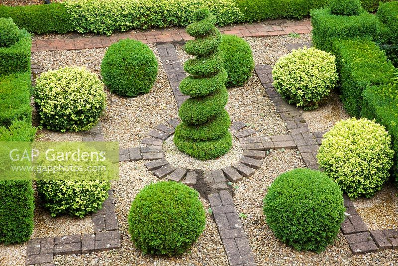 Small topiary garden with Buxus - Box central spiral, Buxus sempervirens and Buxus sempervirens variegata balls set in gravel and brick - Pine House