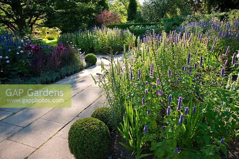 The Scented Garden, Including Agastache, Lilium, Lavandula And Salvia. RHS  Garden Harlow