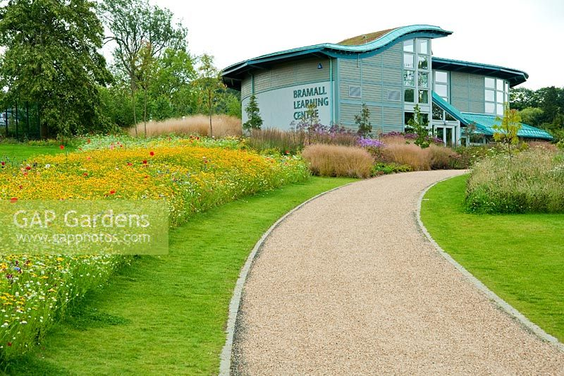 GAP Gardens - Bramall Learning Centre and Library with annual meadow ...