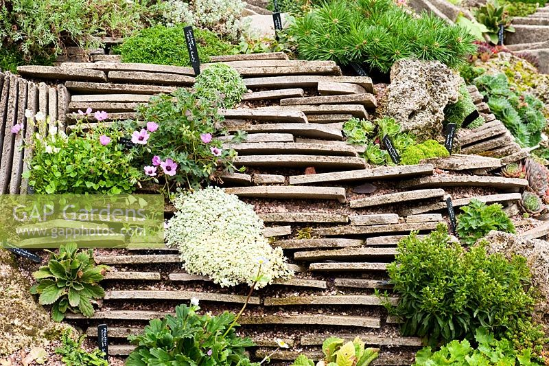 GAP Gardens - Crevice garden created using thin layers of stone ...