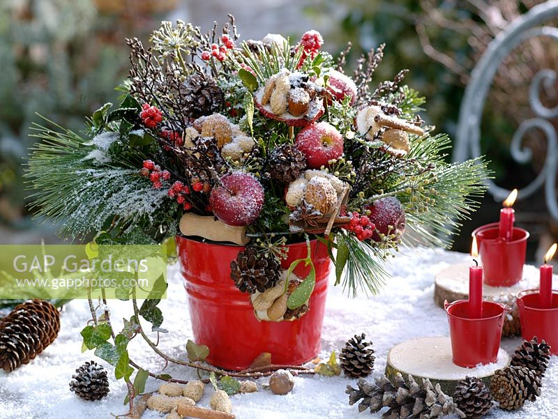 Christmas bouquet of apples, dried apple slices covered with nuts, star anise and cinnamon sticks, Pinus, Hedera, Viscum album, Betula and Ilex