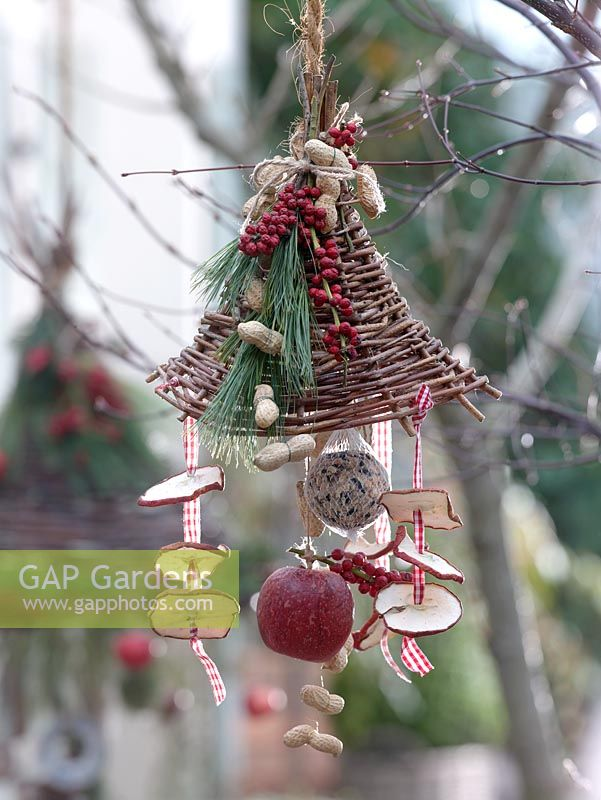 Decorative bird feeding station with seed cakes, apples and fir cones