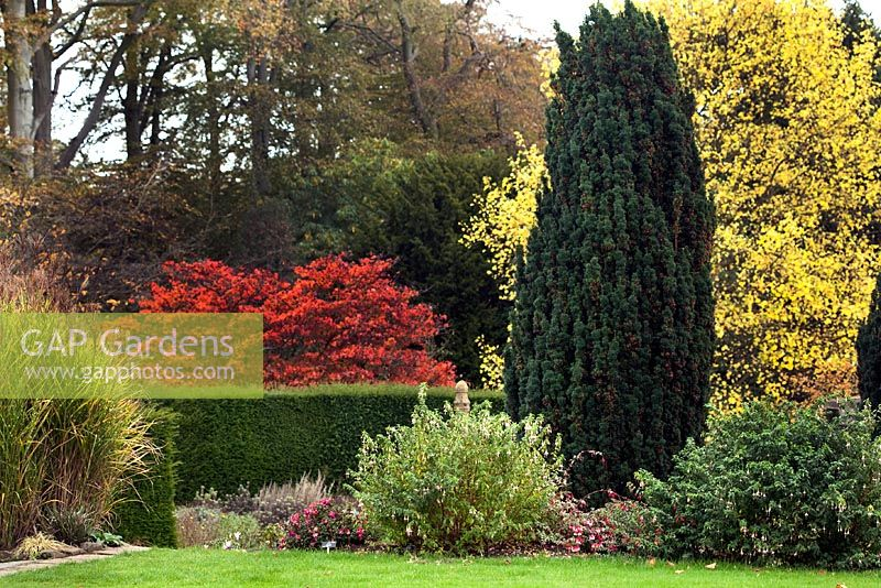 GAP Gardens Autumn view at Winterbourne Botanic Garden Image No