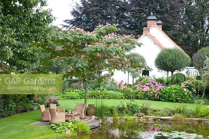 Seating area overlooking pond, planting includes - Hydrangea macrophylla, Prunus fruticosa 'Globosa' and Albizia julibrissin - Tropical Touch