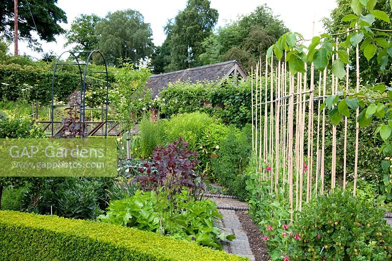 Gap gardens vegetable garden preen manor shropshire image no 0310451 photo by jenny lilly for How to use preen in vegetable garden