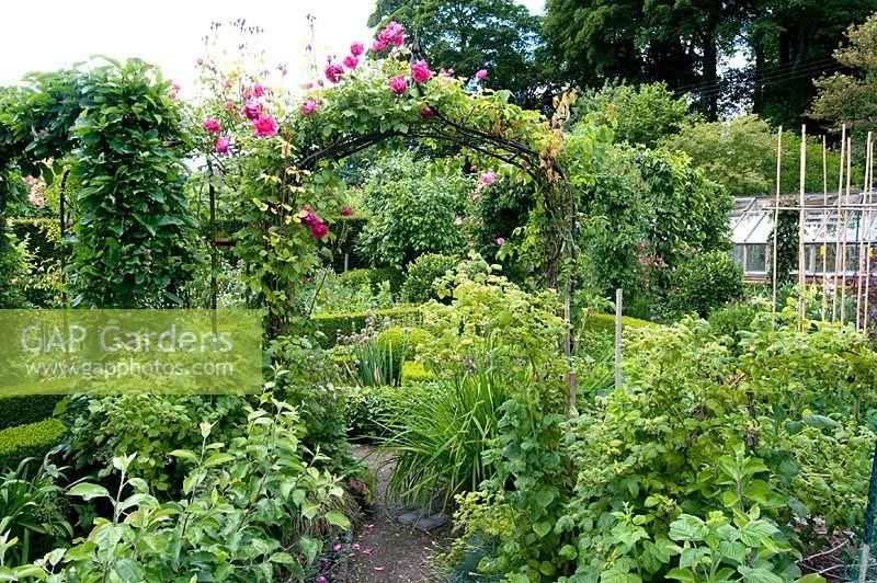 Gap gardens vegetable garden with rosa climbing over arches preen manor shropshire image for How to use preen in vegetable garden