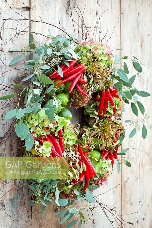 Christmas wreath with Hydrangeas, Eucalyptus, Agapanthus seedheads, chillies, birch and limes