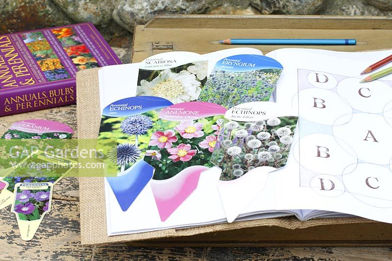 Perennial flowerbed plans