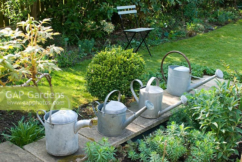 Row of galvanised watering cans in garden