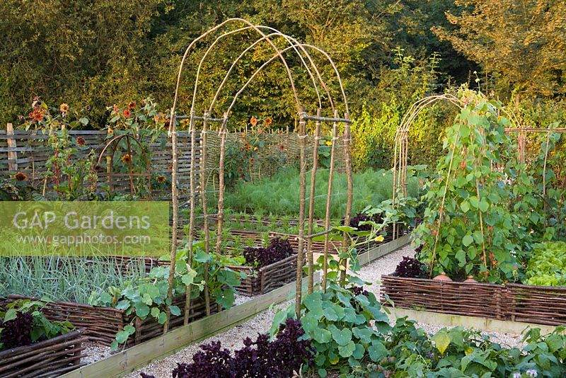 The Vegetable Garden At Perch Hill In Early Autumn Raised Beds Edged With Woven Hazel