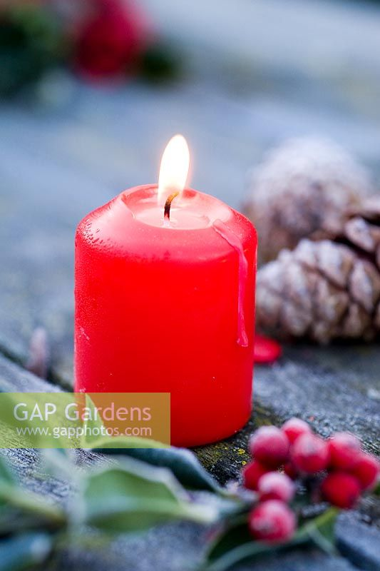 Lit red candle on frosty table with Holly and cones