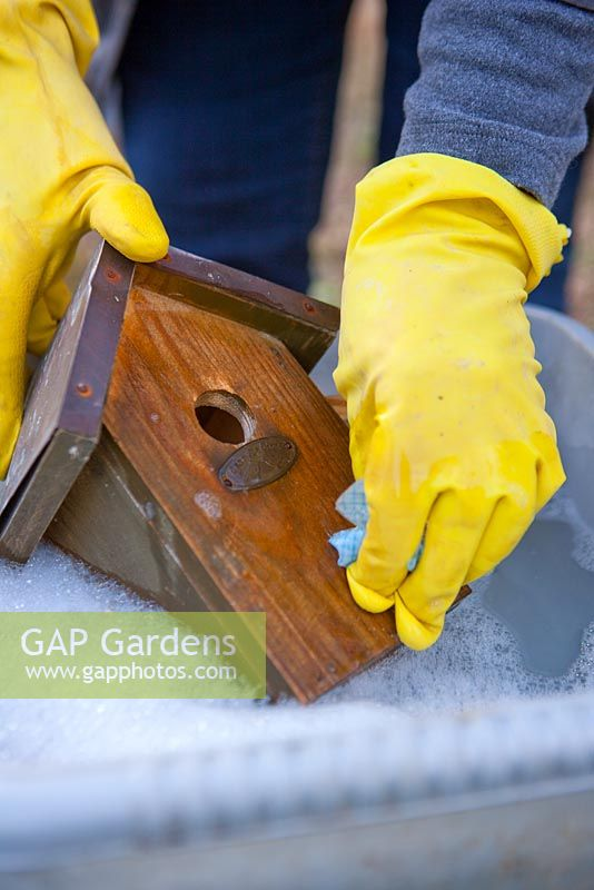 Cleaning a bird house in hot soapy water - inside and out