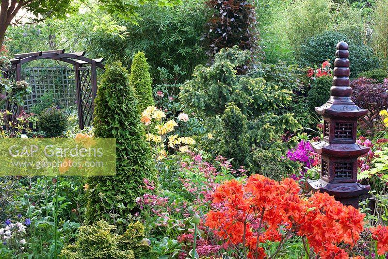 Gap gardens oriental themed garden with conifers for Japanese themed garden