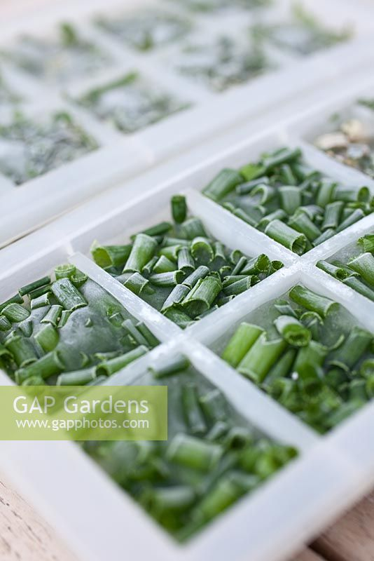 Step by step - Making herb filled ice cubes