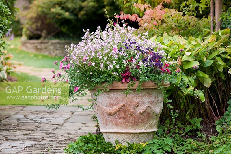 A pot outside the Highgrove House, Highgrove Garden, with flowering plants, September 2009.