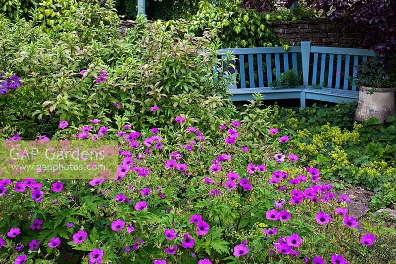 The Cottage Garden with blue bench, Highgrove Garden, June 2011.