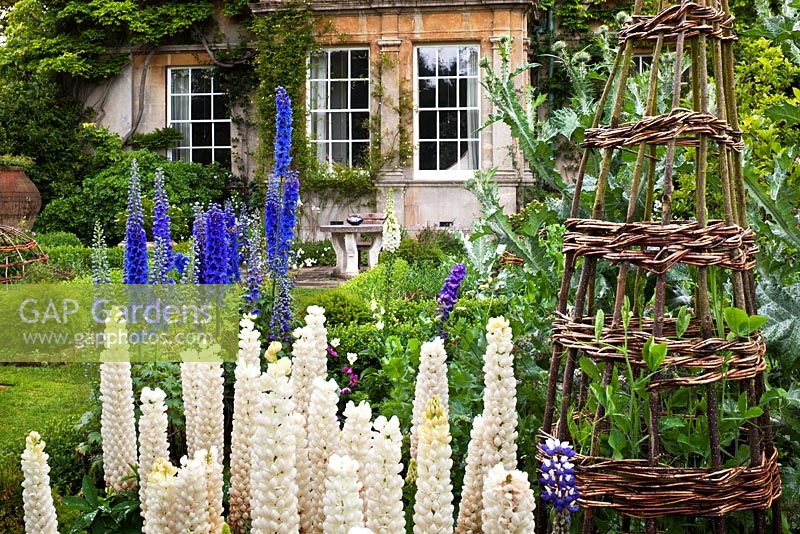 The Sundial Garden and Highgrove House with lupins, June 2011.