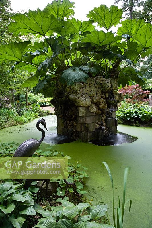 The Water Feature in the Stumpery with Gunnera (Giant South American Rhubarb), Highgrove Garden, August 2007. The water feature is made of Hereford red sandstone and Spanish limestone.