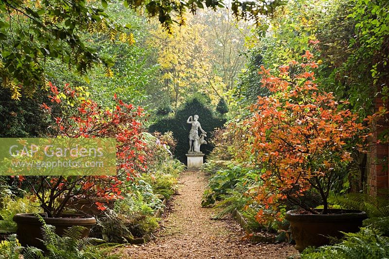 The Azalea Walk in Autumn colours and with the statue of Diana, the Goddess of Hunting.  Highgrove October 2007.