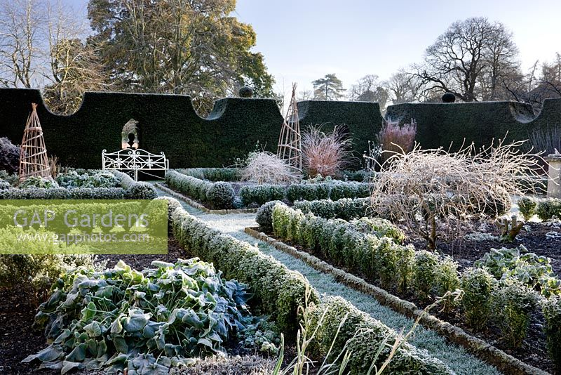 Sundial Garden, with frost in Highgrove Garden, December 2008.