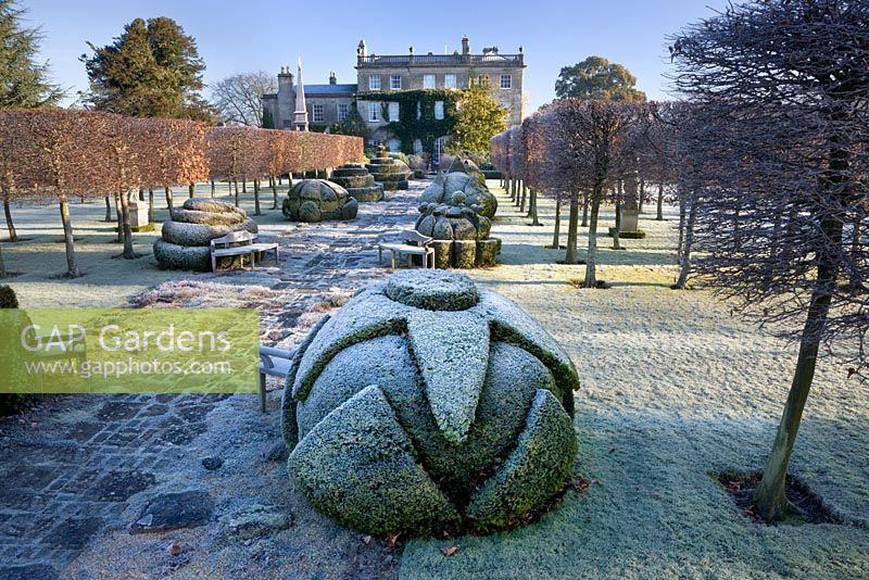 Thyme Walk and the House in frost, Highgrove Garden, December 2008.
