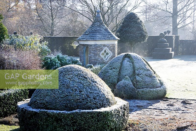 Winter frost, Highgrove Garden, December 2008.