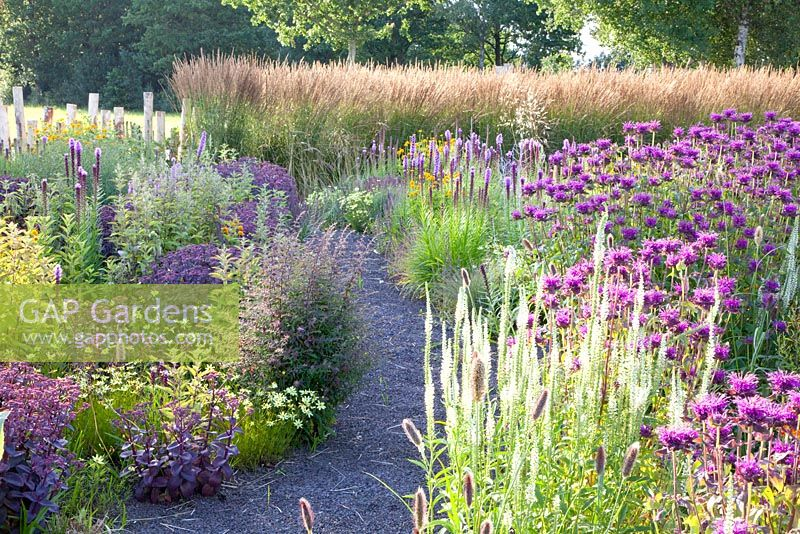 GAP Gardens - Prairie garden at Lianne\'s Siegrassen - Feature by ...