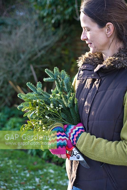 Step-by-step - Making natural decorations using branches from pine tree and mistletoe - collecting materials in the garden