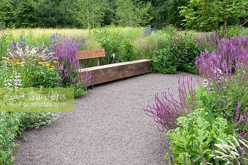 GAP Gardens - North American easy Prairie garden with wooden bench ...