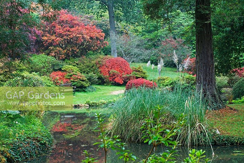 Seating area by the pond with surrounding Acer and grasses in the 'Homewood' area - Exbury Gardens, Hampshire, UK