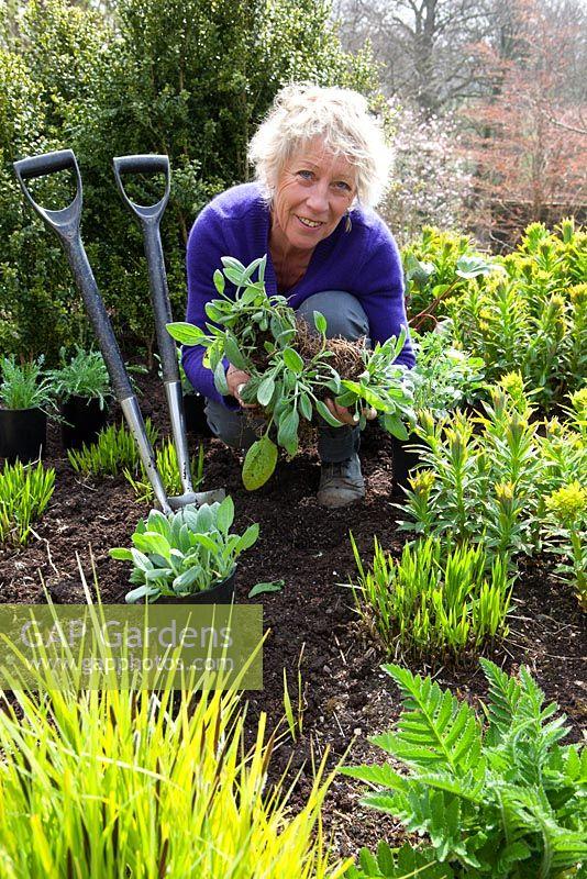 Afbeeldingsresultaat voor carol klein gardening