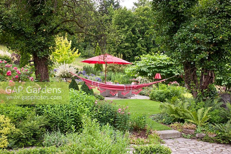 On one level of a big garden a rest area with wicker garden furniture, a parasol and a hammock is surrounded by flowering borders and old trees. Hedera helix, Matteucia struthiopteris, Phlox paniculata, Rosa and Salix integra 'Hakuro Nishiki'