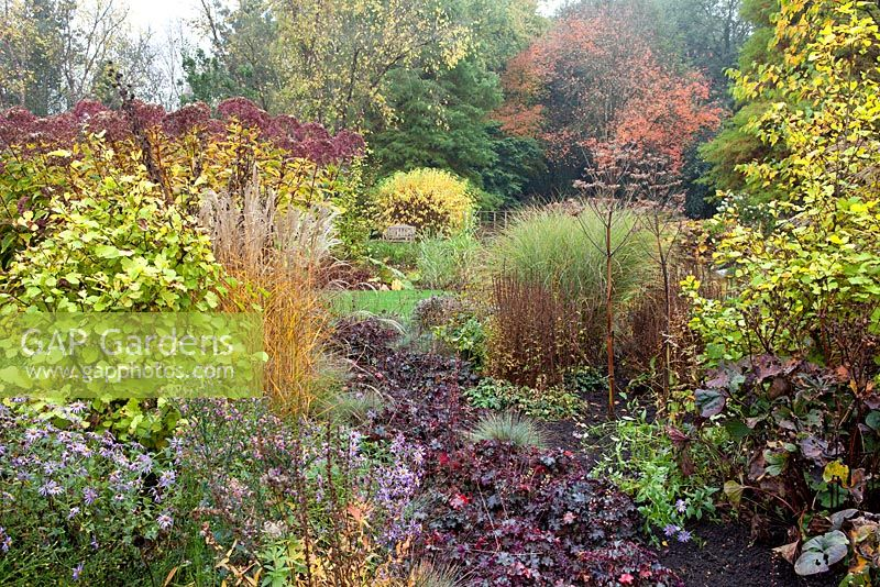 Autumn border at Foggy Bottom, The Bressingham Gardens, Norfolk, UK. October.